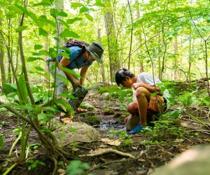 Kids from various northern New Jersey towns can get a ride to Nature Place Day Camp in Chestnut Ridge, N.Y. Photo courtesy of the camp