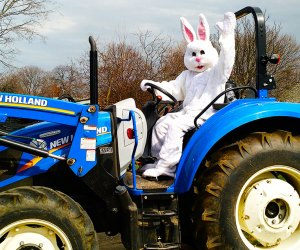 Score your tickets soon for the Barnyard Egg Hunt at The Queens County Farm Museum. Photo courtesy of the museum