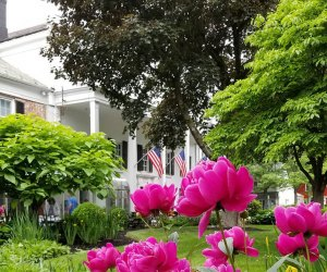 the gardens at the beekman arms and delamater inn