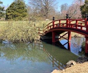The red bridge at Duke Farms