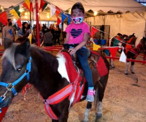 The Best Pumpkin Patches near Los Angeles: Pony rides at the pumpkin patch