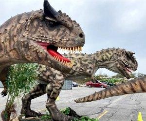 Meet animatronic dinosaurs on a drive-thru Jurassic Quest!