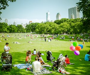 Lush Central Park makes for a perfect day on the UES. Photo by ep_jhu via flickr