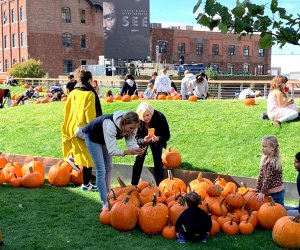 The William Vale Hotel transforms Vale Park into a family-friendly pumpkin patch for two October weekends. Photo courtesy of the hotel