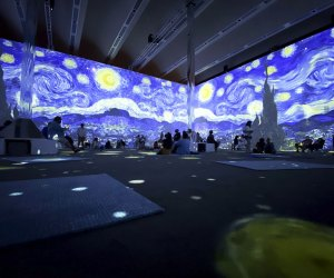 Seeing The Starry Night in total immersion is one of the highlights of Van Gogh: The Immersive Experience.