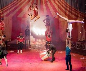 Time to go back to the Big Top with Mr. V's Big Top Dream. Photo courtesy of Circus Vargas
