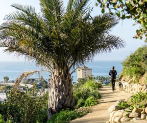 Ventura Botanical Garden is free on New Year's Day. Photo courtesy of Visit Ventura