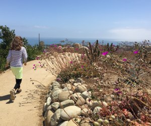Things To Do on Mother's Day in LA: Ventura Botanical Gardens