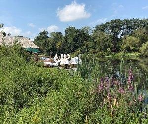 Ride the swan boats at Verona Park
