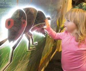 Get hands on at the Very Eric Carle exhibit. Photo by Larry Rippel
