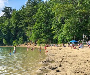 Historic Walden Pond is open for cooling off this summer. Photo by Todd Van Hoosear/CC-BY-SA 2.0