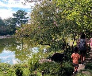 Walking inside Hermann Park's Japanese Garden. Photo courtesy of Vicky Li Yip.