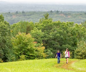 12 Great Places To Hike with Kids around Boston: Ward Reservation