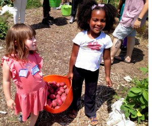 Family Garden Days are monthly classes for families to join Washington Youth Garden's one-acre fruit and vegetable garden. Photo courtesy of Washington Youth Garden
