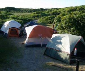 Tents set-up at Fire Island's Watch Hill