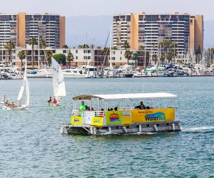 Hop on the WaterBus in the Marina. Photo courtesy of Visit Marina del Rey