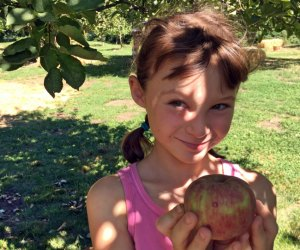 Apple Picking near Los Angeles: Happy girl with apple