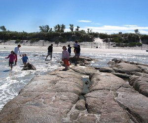 Wingaersheek Beach at low tide creates tide pools for critter searching