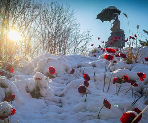The Grounds For Sculpture welcomes visitors all winter long. Photo courtesy of the venue