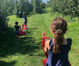 Kids search for apples at Wightman Farms' orchard
