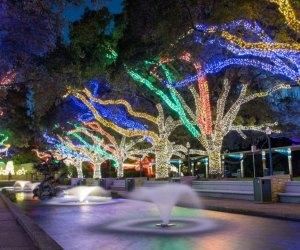 The promenade at the Houston Zoo is brilliantly lit during the holidays at Zoo Lights.