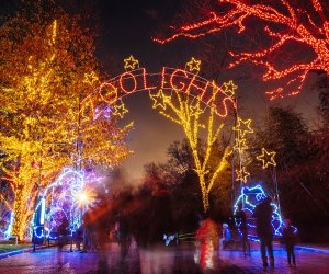 Walk off the Thanksgiving meal at ZooLights, the National Zoo's free annual lights festival. Photo courtesy of Smithsonian's National Zoo