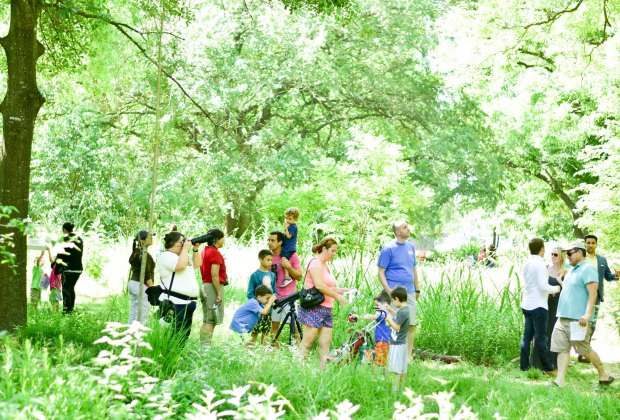 guided hikes for houston toddlers and preschoolers mommypoppins