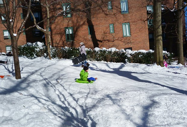 Stuy-Town offers gentle sledding hills