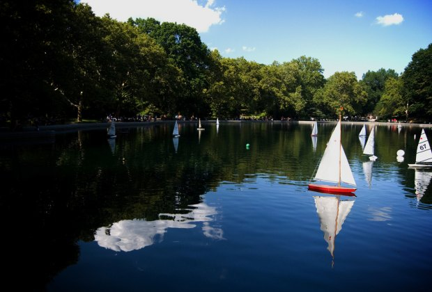 Central Park's Conservatory Water filled with sailboats