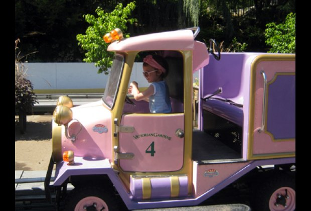 """Can't get enough of """"driving"""" the roadsters on the Convoy"""