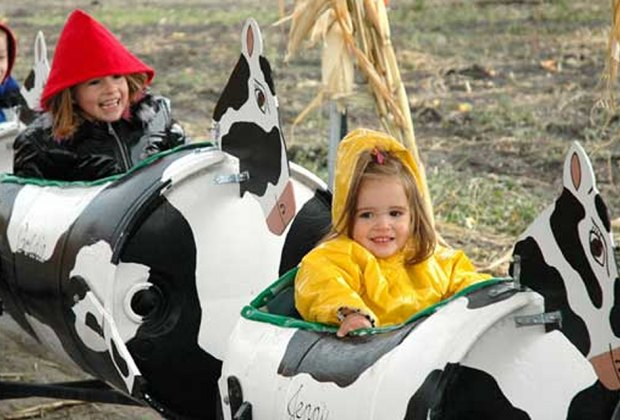 Best Farms for Family Fun and Entertainment in Chicago: kids on a ride
