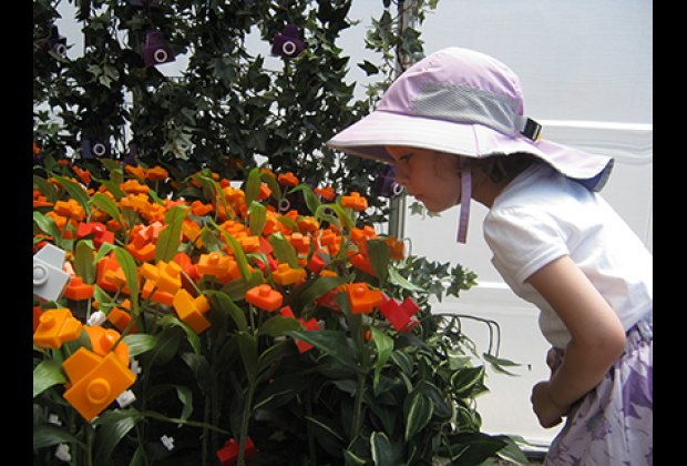"""Admiring the """"camera flowers""""--look but don't touch!"""