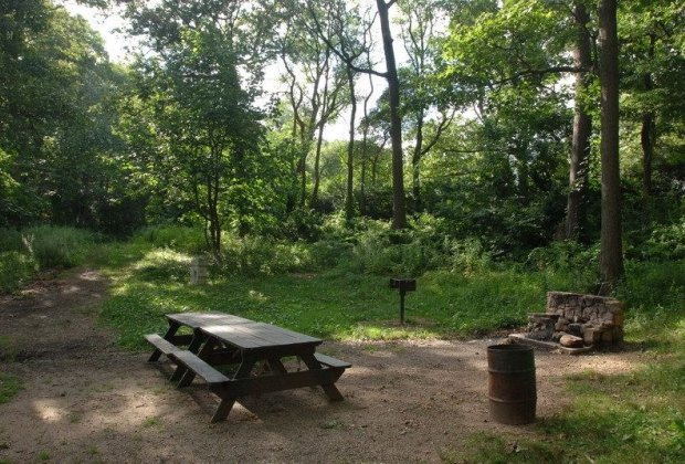 A bbq area at Ally Pond Park