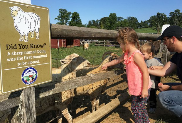 Cream Of The Crop 10 Best Farms For Family Fun And Entertainment In Nj Mommypoppins Things To Do In New Jersey With Kids