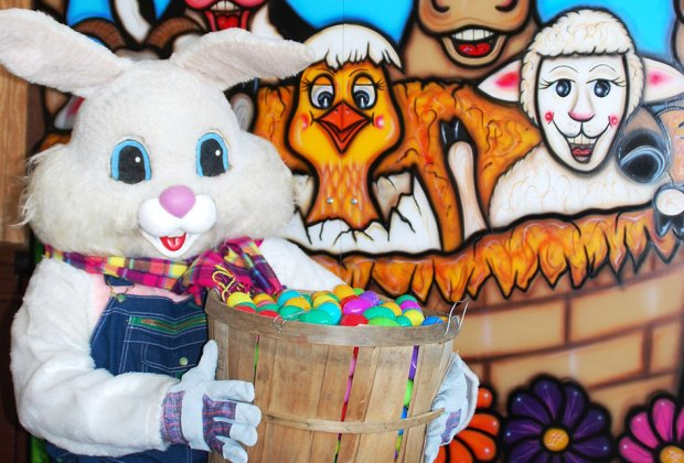 There's lots of Easter fun happening at Alstede Farms. Photo courtesy of the farm
