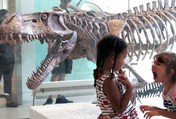 Little girls roar at the American Museum of Natural History