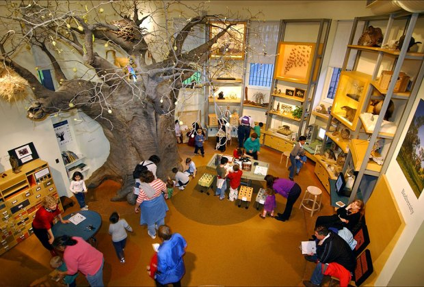 Best Children's Museums for Families to Visit in New York