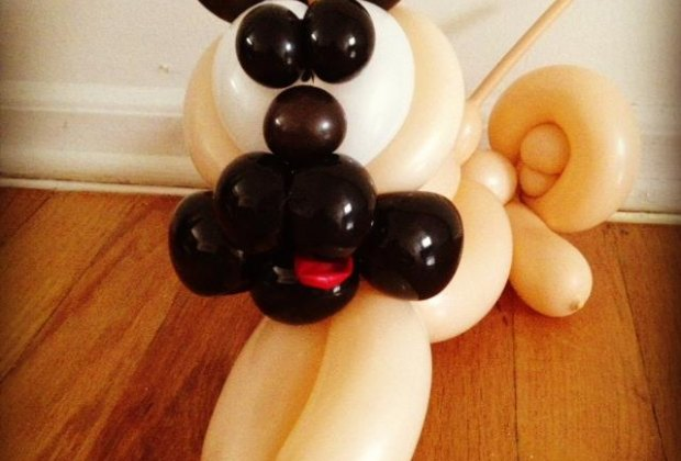 A special pug balloon, just for me!