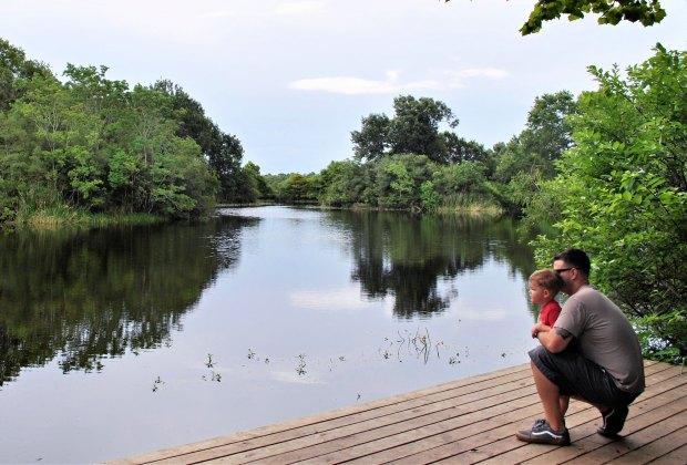 Armand Bayou Nature Center.