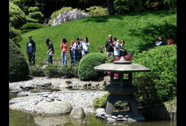 The Brooklyn Botanic Garden, free on Tuesdays, amazing year-round