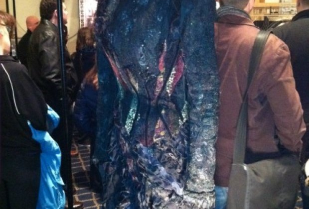 Elphaba's dress up close