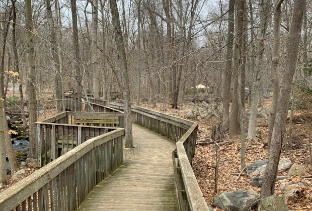 Stamford Museum & Nature Center boardwalk