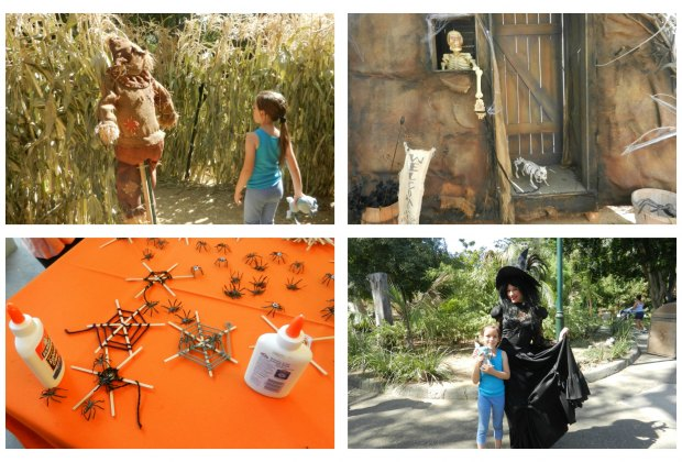 Photo ops, spooky decorations and crafty activities throughout the zoo