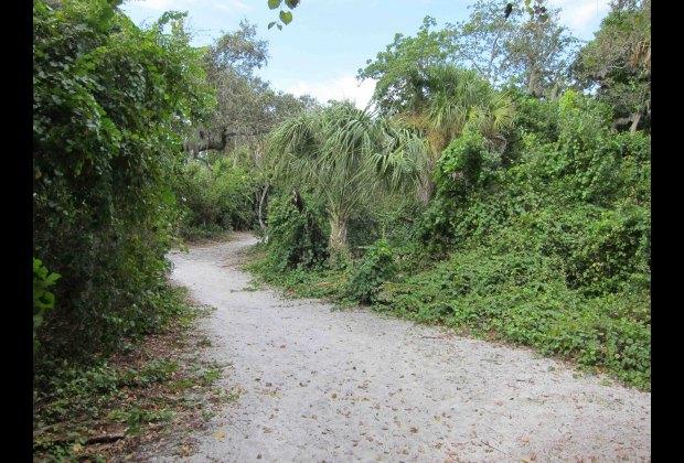 Sanibel Island Attractions: Sanibel Island, Florida With Kids: 25 Best Activities For