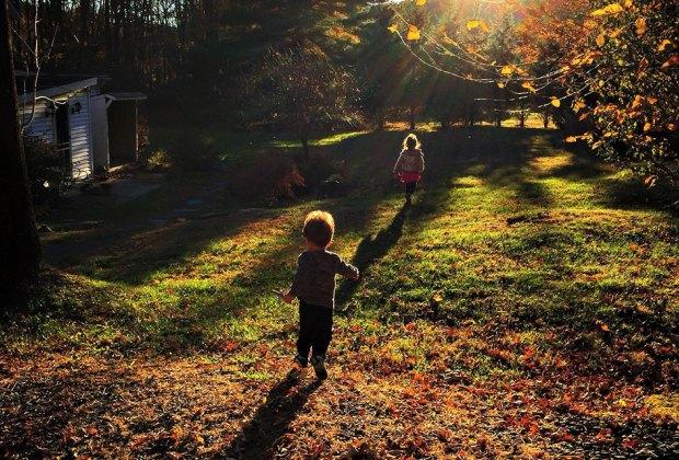 Romp through the woods in the beautiful Catskills. Photo by Deborah Dadlani
