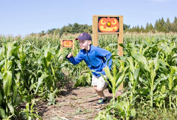 Follow the pumpkin trail markers! Photo courtesy of C&C Reading Farm
