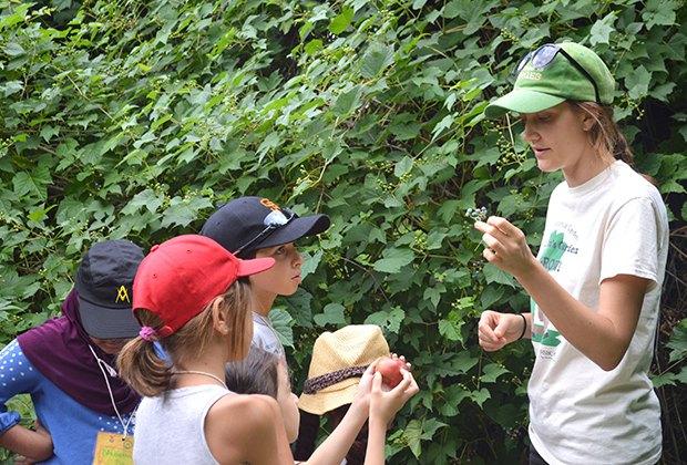 Garden educator teaches children about plants at the Queens Botanical Garden