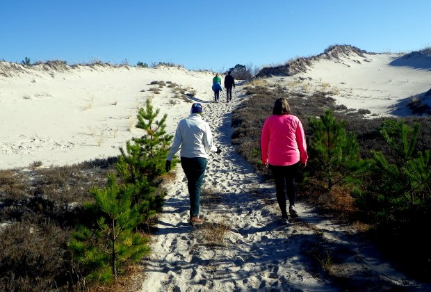 12 Great Places To Hike with Kids around Boston: The Crane Estate