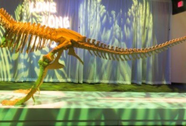 This T.rex was made from more than 80,000 Legos