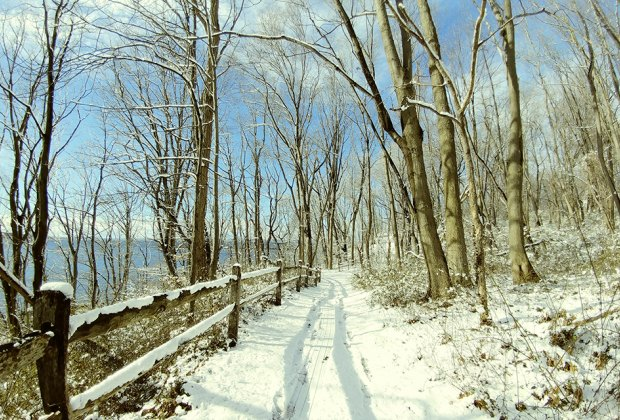 cross country skiing Garvies Point Museum & Preserve in Glen Cove.